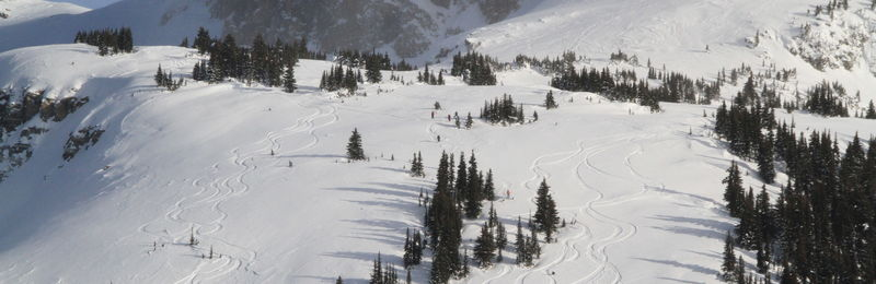 Eagle Pass Heli Skiing review