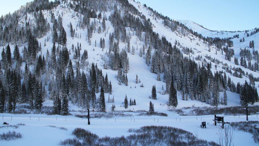 Alta Ski Resort Terrain Status