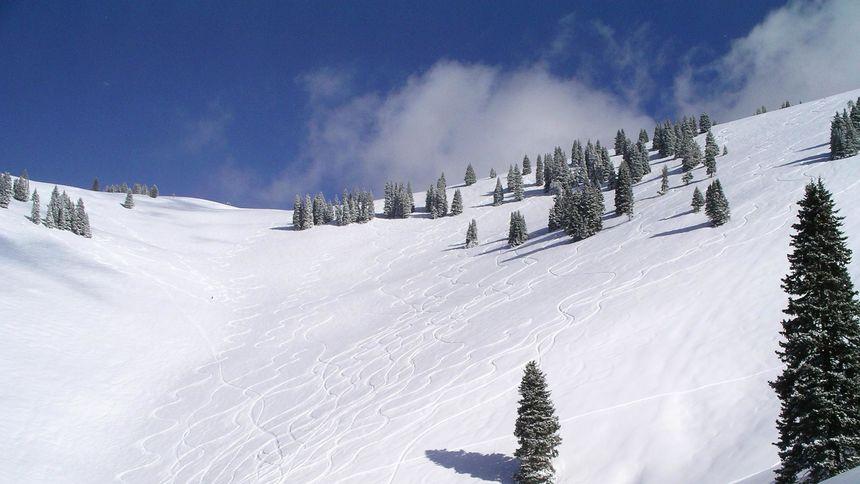 Vail ski resort terrain