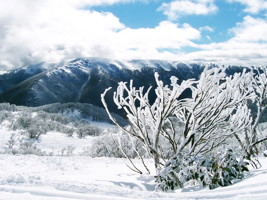 The 5 Best Ski Resorts in Australia - UPDATED 2020/21