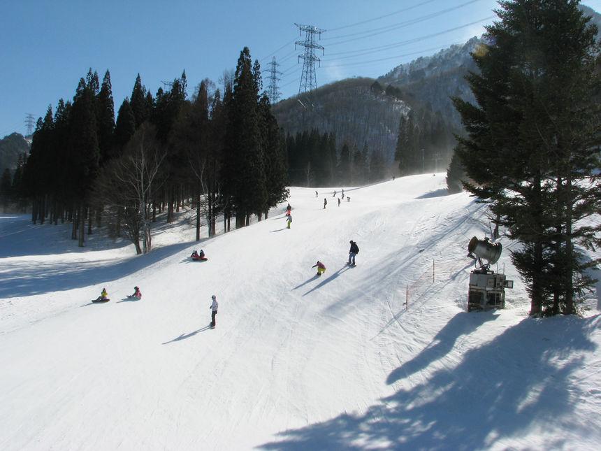 Skiing vs Snowboarding - SnowPak