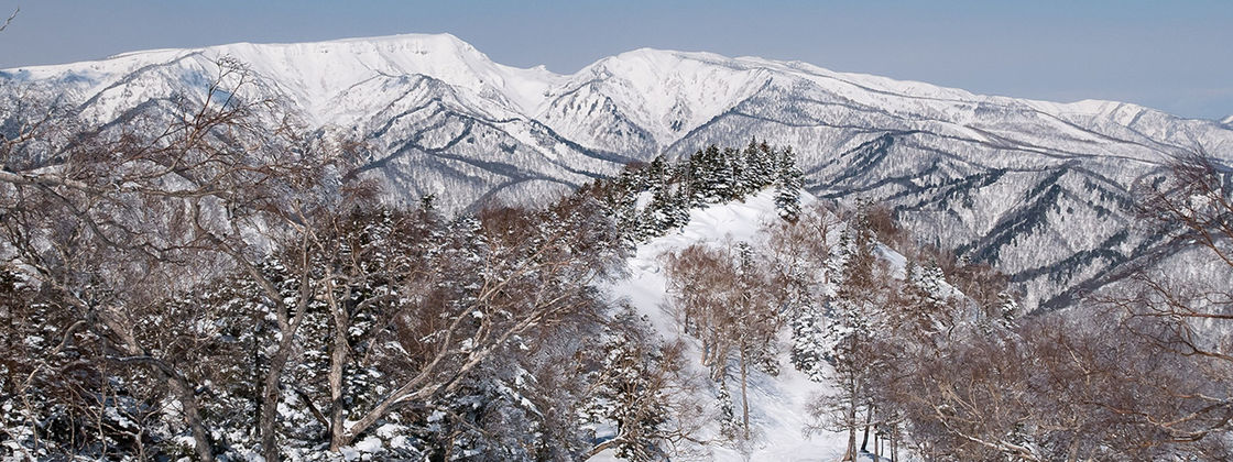 The 11 Best Japan Ski Resorts - UPDATED 2019/20 - SnowPak